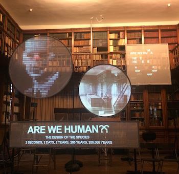 Biz İnsan Mıyız? Türümüzün Tasarımı